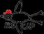 Birdcap logo